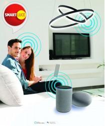 FABAS Accessorio Smartluce 3572-00-001 per Dimmer